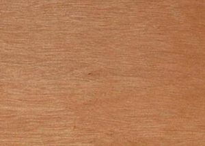 Blackbutt timber melbourne victoria australia