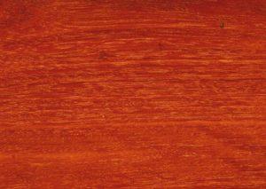 Forest Red Gum for sale melbourne victoria australia
