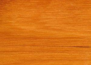 Grey Ironbark timber melbourne victoria australia