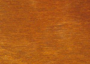 Spotted Gum timber for sale melbourne victoria australia