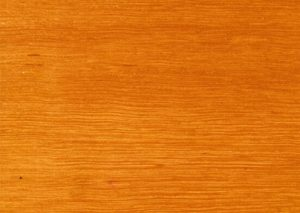 Sydney Blue Gum timber melbourne victoria australia